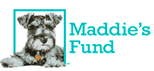 Thank You Maddie's Fund®