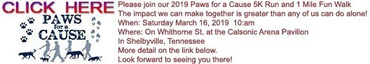 Paws for a Cause 2019 Registration link