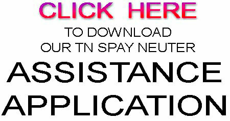 Download TN Spay Neuter Assistance Application 2016